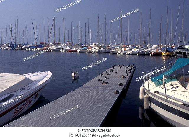 Switzerland, Lausanne, Ouchy, Vaud, Lac Leman, Boats docked in the harbor of Lake Geneva. Ducks on the dock