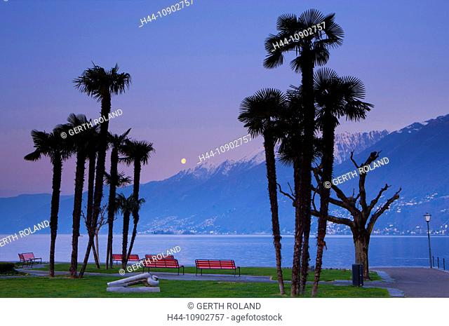 Ascona, Switzerland, Europe, canton, Ticino, Lago Maggiore, daybreak, moon, full moon, trees, palms, lake shores, park, park-benches