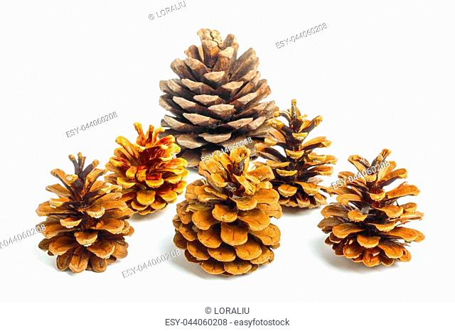 Set of Old brown cones isolated on white background