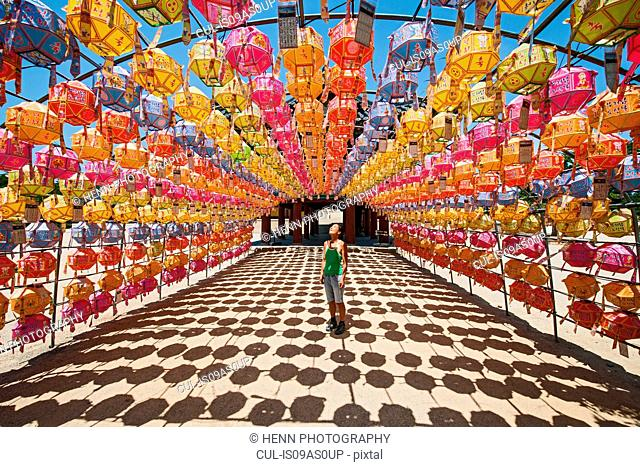 Female tourist looking at rows of lanterns honoring buddha birthday in Naksansa Temple, Naksansa, Yangyang, Gangwon province, South Korea