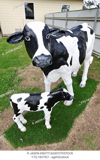 Life-size Friesian dairy cows can be found throughout the country town of Cowaramup, Western Australia, Australia