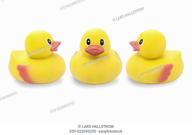 Three yellow rubber ducks