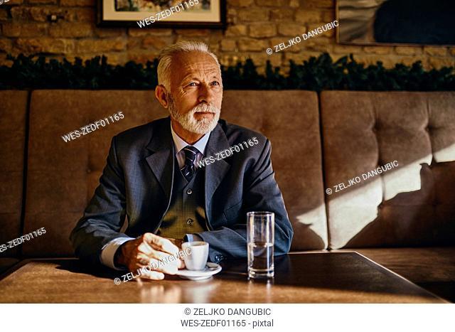 Portrait of elegant senior man sitting in a cafe