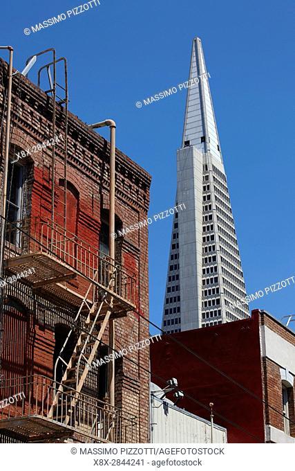 Transamerica Pyramid in San Francisco, California, USA