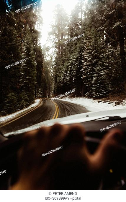 Male hand driving on rural road in Sequoia National Park, California, USA