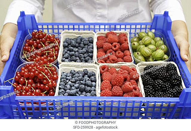Person holding crate of fresh berries