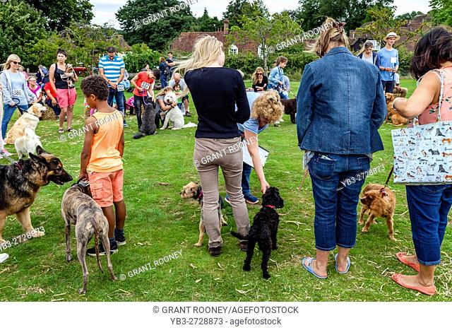 The Dog Show At The Annual Hartfield Village Fete, Hartfield, East Sussex, UK