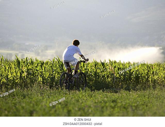 Mountain biker riding through field