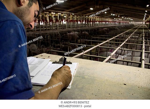 Salamanca, Spain, Pig farmer writing notes in a folder