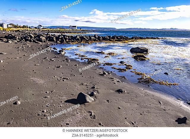 Basalt rocks at the coastline of Reykjavic, Iceland
