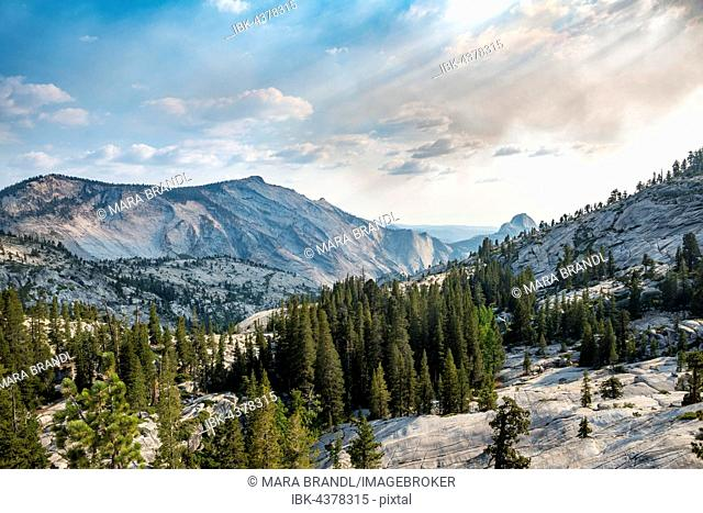View towards High Sierra, Olmsted Point, Yosemite National Park, California, USA
