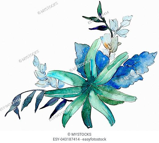 Watercolor blue and purple flowers. Floral botanical flower. Isolated illustration element. Aquarelle wildflower for background, texture, wrapper pattern