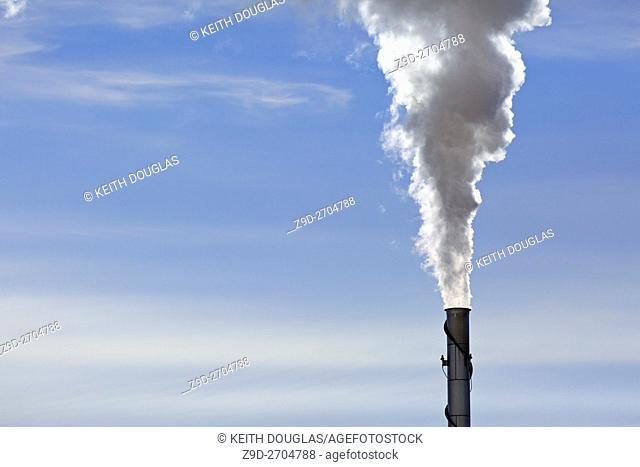 Emissions from wood pellet plant, Williams Lake, British Columbia
