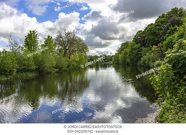 View of the Rio Nore River as it passes through the lush forest of Kilkenny Castle Park