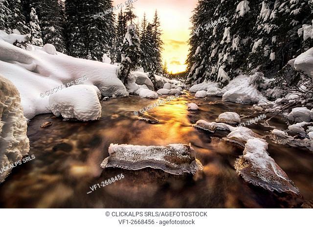 Winter sunset in the Venegia Valley, Panaveggio Natural Park Dolomites Trentino Alto Adige Italy