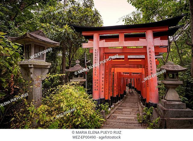 Japan, Kyoto, Fushimi Inari-Taisha temple, Torii Gate, Tourist with backpack