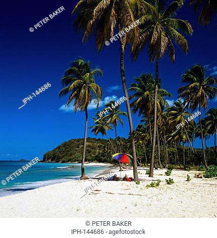 Beautiful Darkwood Beach on the island of Antigua