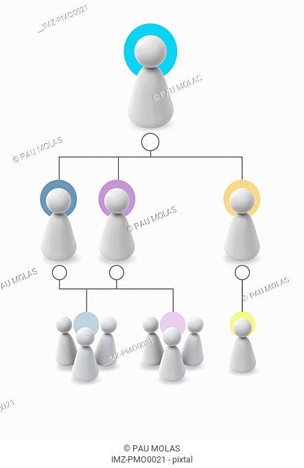A family tree chart