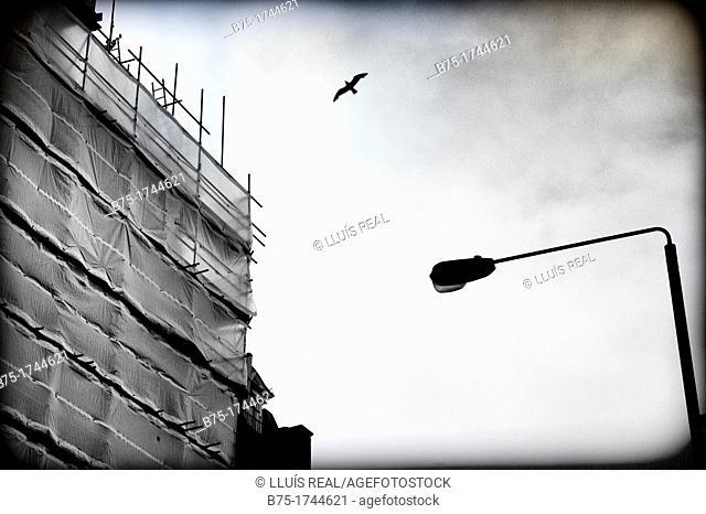 edificio en obras con andamio y farola en la City en Londres, England, UK, building under construction with scaffolding and lamppost in the City in London