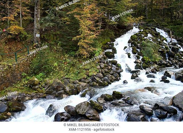 water torrent in Joeu river  Uelhs deh Joeu  Artiga de Lin  Aran Valley  Pyrenees mountain range  Lerida province  Catalonia, Spain, Europe