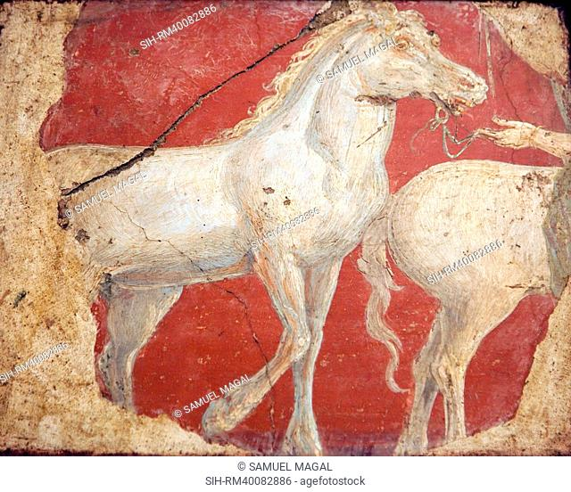 Italy, Naples, Naples National Archeological Museum, from the Villa of Arianna in Stabiae, Horses