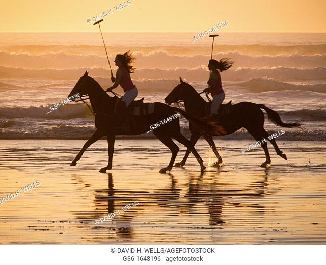 Horseback riders and horses on the beach at sunset in Morro Bay, California, United States