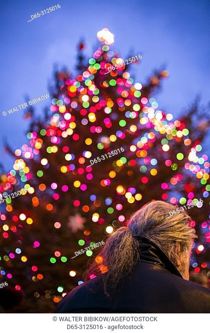 SA, New England, Cape Ann, Massachusetts, Rockport, defocussed Christmas tree