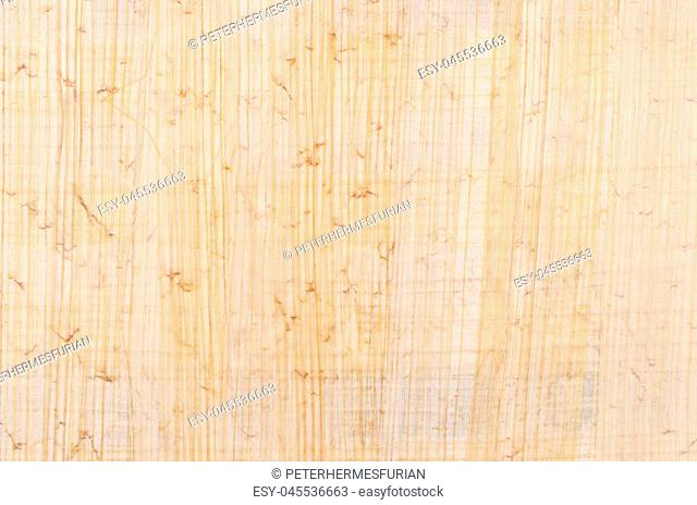 Papyrus surface. Material similar to thick paper, used in ancient time as a writing surface. Made of the pith of the papyrus plant, Cyperus papyrus