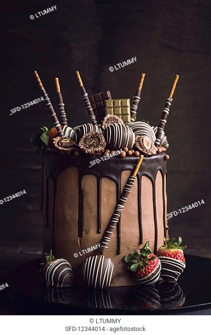 Sweet chocolate cake served on the wooden background