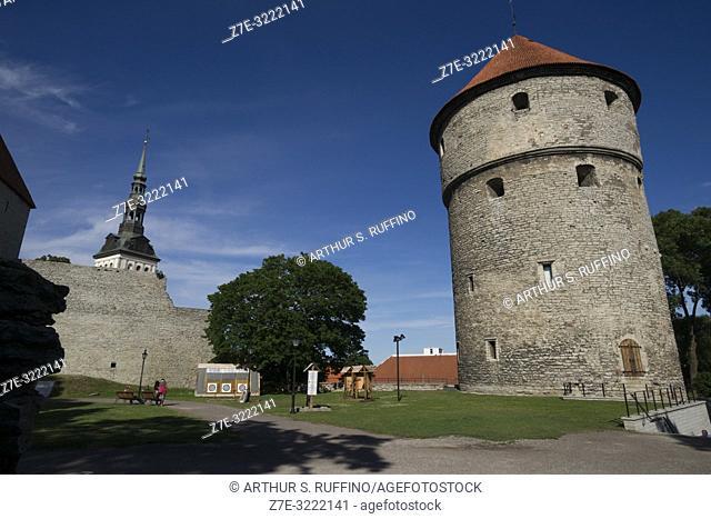 Kiek in de Kök (Peek in the kitchen) Tower. Old Town, Tallinn, Estonia, Baltic States
