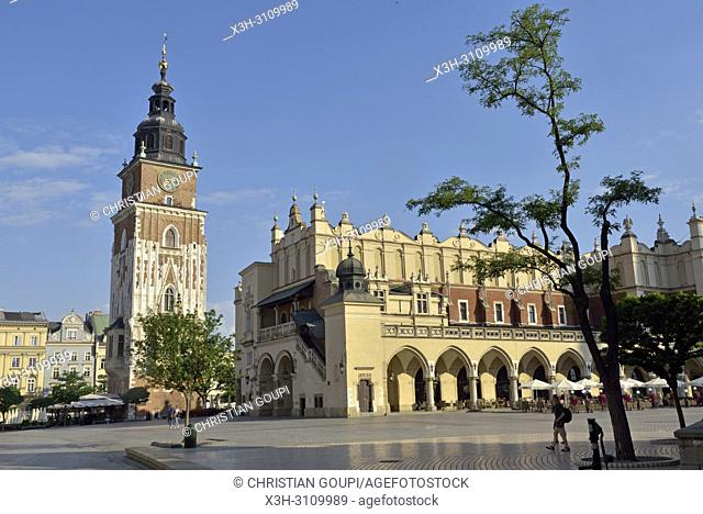 Town Hall Tower and Cloth Hall (Sukiennice) on Rynek Glowny, the main square of the Old Town of Krakow, Malopolska Province (Lesser Poland), Poland