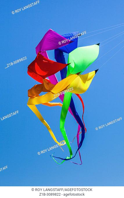 Large spiral kite flying at the 2018 Steveston Kite Festival
