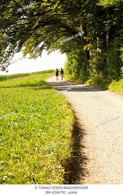 Two women running on road, Zurich, Switzerland