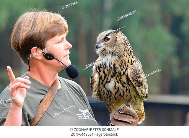 German falconer with siberian eagle owl