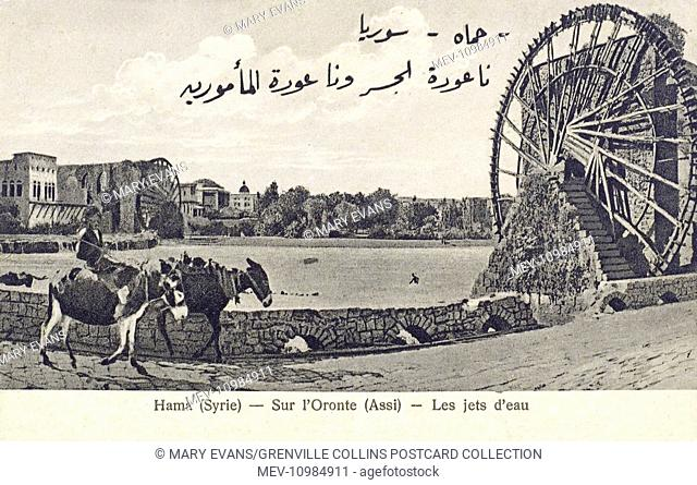 Hama, Syria - The Giant waterwheels on the Orontes River. The city is renowned for these seventeen 'norias', which locals claim date back to 1100 BC