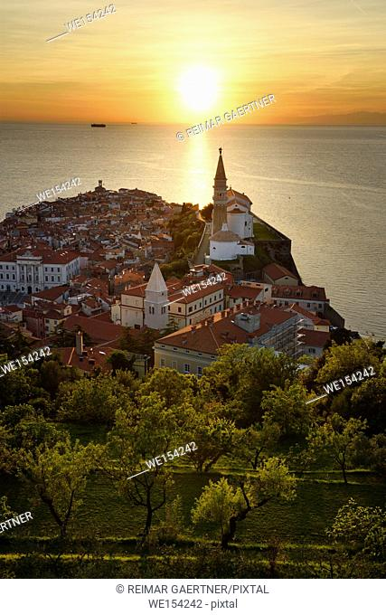 Setting sun on the Adriatic Sea with hillside trees below Town Wall of Piran Slovenia with City Hall, St Clement, St Francis, St George's churches