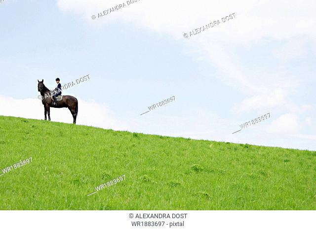 Woman Riding Horse in Rural Landscape, Baden Wuerttemberg, Germany, Europe