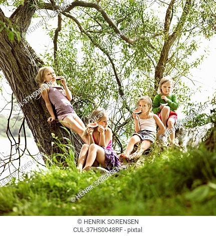 Girls eating watermelon in tree by lake