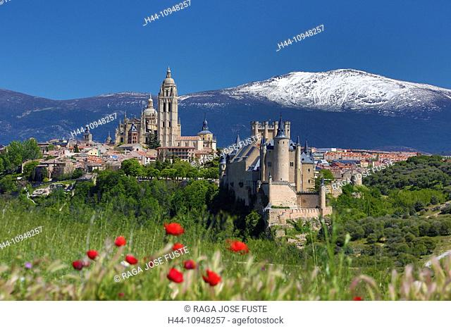 world heritage, Alcazar, Castilla, Castile, Guadarrama, Mountain Range, Segovia, poppies, architecture, castle, cathedral, city, colourful, flowers, history