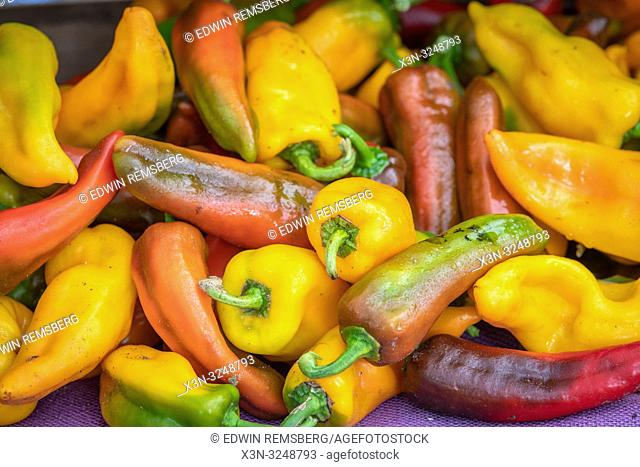 Close-up of a variety of peppers for sale at farmer's market, Rehoboth Beach, Delaware
