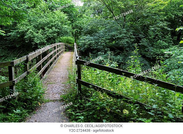Hadrian's Wall Footpath Crosses a Stream between Newtown and Walton, Cumbria, England, UK