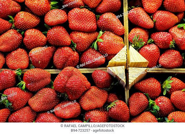 Strawberries for sale at La Boqueria market, Barcelona. Catalonia, Spain