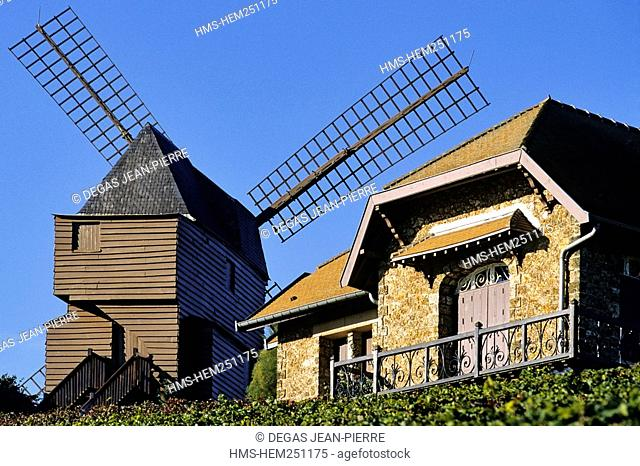 France, Marne, Cote des Blancs, organised tour on route du champagne Champagne road with the mill of Montagne de Reims