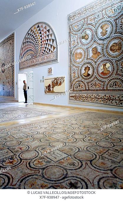 Tunez: El Jem Roman mosaics at the Archeological Museum