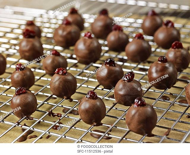 Dark chocolate coated, handrolled marzipan truffles with cranberries drying on a wire rack