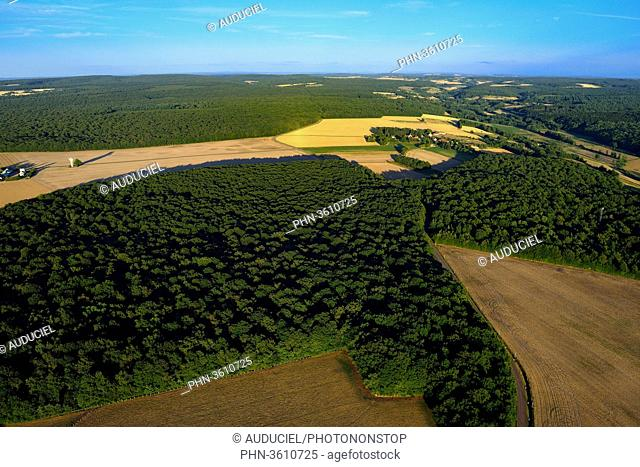 Europe, France, fields and forests of Burgundy near Donzy in the Nievre