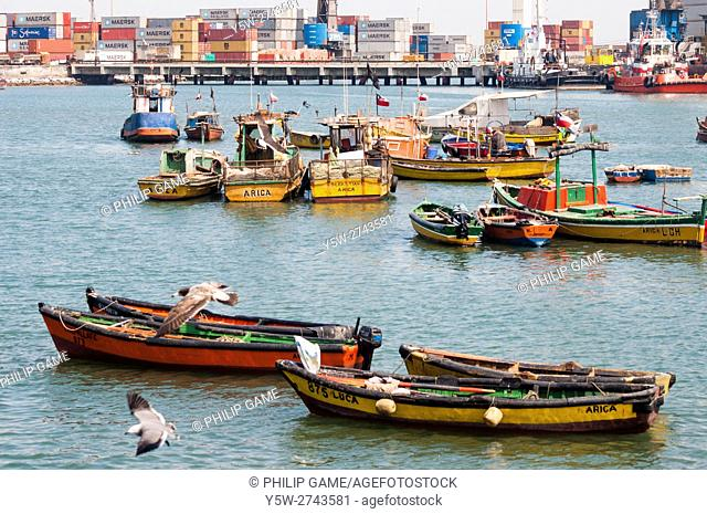 Fishing harbour, Arica