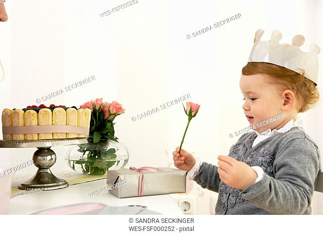Little girl's first birthday