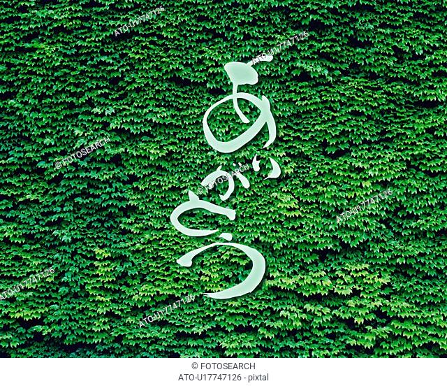Green leaves and Japanese word in the center, Computer Graphics, composition, full frame