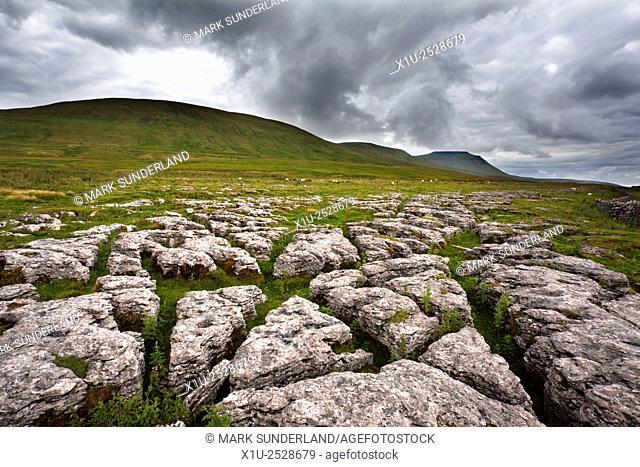 Ingleborough from Fell Close Rocks near Ribblehead Yorkshire Dales England